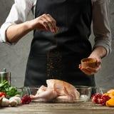o cozinheiro chefe polvilha a paprika congelada, galinha com fim do fruto acima, fundo para o livro da receita, menu, instagram foto de stock royalty free
