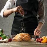 o cozinheiro chefe polvilha o sal congelado, galinha com fim do fruto acima, fundo para o livro da receita, menu, instagram imagens de stock