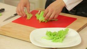 O cozinheiro chefe rasga a alface de folha verde vídeos de arquivo