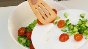 O cozinheiro põe em uma bacia finamente - de pepino desbastado e de tomates de cereja partidos ao meio vídeos de arquivo