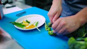 O cozinheiro que corta os brócolis na placa vídeos de arquivo