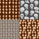 O crânio desossa da ilustração assustador do vetor do medo dos ossos cruzados do horror do Dia das Bruxas do rosto humano o fundo ilustração royalty free