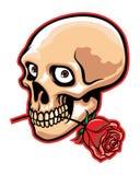 O crânio e aumentou Imagem de Stock Royalty Free