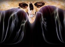 O crânio III ilustração royalty free