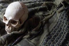 O crânio no símbolo da guerra Foto de Stock Royalty Free