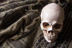 O crânio no símbolo da guerra Fotografia de Stock Royalty Free