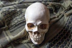 O crânio no símbolo da guerra Imagem de Stock Royalty Free