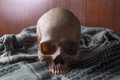 O crânio no símbolo da guerra Imagem de Stock