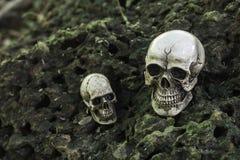 O crânio ou a fotografia humana de esqueleto Fotografia de Stock