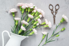 O cravo cor-de-rosa macio pequeno floresce no vaso do esmalte no concreto cinzento, horizontalmente configuração Fotografia de Stock
