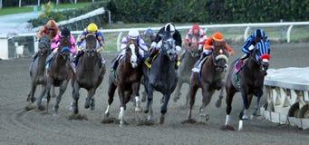 O credo de Jimmy ganha as estacas 2012 de Malibu imagens de stock royalty free