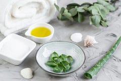 O creme caseiro da máscara do corpo dos ingredientes naturais esfrega com aloés Vera Salt Olive Oil Honey imagens de stock