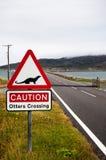 O cruzamento da lontra assina dentro Escócia fotos de stock