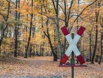 O cruzamento de estrada de ferro assina nas madeiras com folhas de outono imagem de stock royalty free