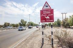 O cruzamento do camelo assina dentro Abu Dhabi, UAE Imagens de Stock Royalty Free