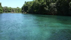 O Crystal River na primavera video estoque