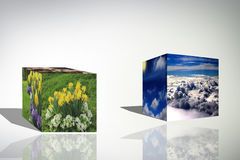 o cubo 3d nubla-se a ilustração azul do fundo do nascer do sol da natureza da flor Imagens de Stock Royalty Free