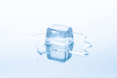 O cubo de gelo está derretendo Fotografia de Stock Royalty Free