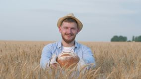 O cultivador feliz novo da grão, homem considerável no chapéu de palha dá-o no pão cozido saboroso e nos sorrisos da câmera que e filme