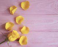O cumprimento amarelo do frescor aumentou em um fundo de madeira cor-de-rosa, quadro fotografia de stock royalty free