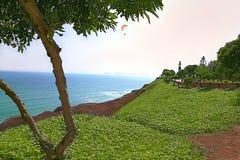 O ` da costa do verde do ` na frente do Oceano Pacífico - Miraflores, Lima - Peru fotografia de stock