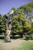 O ` de Yurabirong do ` foi feito no tronco de Forest Red Gum idoso foi cinzelado por artistas aborígenes fotos de stock