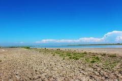 O delta de Camargue, França Imagens de Stock