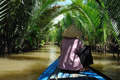 O delta de Mekong imagens de stock royalty free