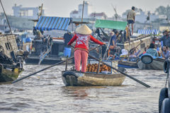 O delta de Mekong, pode Tho, Vietnam Fotografia de Stock Royalty Free