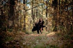 O demônio e a bruxa de Dia das Bruxas correm através das madeiras foto de stock