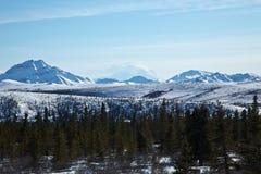 O Denali de Alaska imagem de stock