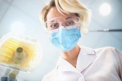 O dentista examina o paciente Imagem de Stock Royalty Free