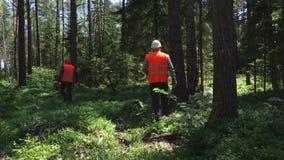 O depositário da floresta fala ao Walkietalkie e marca as árvores vídeos de arquivo