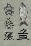 O desenvolvimento de peixes do caráter chinês Imagens de Stock Royalty Free