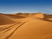 O deserto Imagem de Stock Royalty Free
