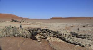 O deserto de Namib Imagens de Stock