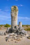 O deserto de pedra Fotos de Stock Royalty Free