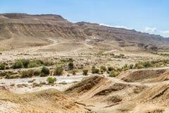 O deserto do Negev Foto de Stock Royalty Free
