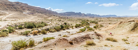 O deserto do Negev Foto de Stock Royalty Free
