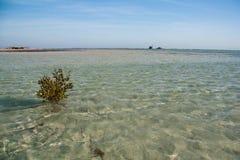 O deserto e o mar de Sinai encalham com areia e sol e ondas Imagens de Stock