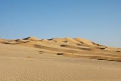O deserto grande Fotos de Stock Royalty Free