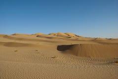 O deserto grande Imagem de Stock