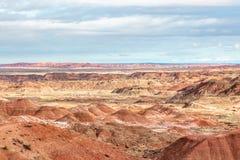 O deserto pintado imagem de stock