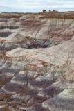 O deserto pintado, o Arizona fotografia de stock royalty free