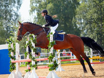 O desportista em um cavalo vermelho. Foto de Stock Royalty Free