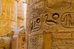 O detalhe das colunas no templo de Karnak em Luxor, Egipto foto de stock