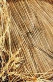 O detalhe de textura de madeira do corte e a grama seca fazem feno Fotografia de Stock