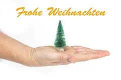 O detalhe de uma mão do ` s da mulher que guarda pouca árvore de Natal com texto no ` alemão de Frohe Weihnachten do ` no branco  Fotos de Stock