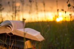 O diário aberto do livro do livro encadernado, páginas ventiladas na natureza borrada aterra imagens de stock