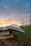 O diário aberto do livro do livro encadernado, páginas ventiladas na natureza borrada aterra fotos de stock royalty free